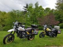 Ducati Scramblers